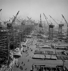 Over a dozen large cranes tower above the busy shipyard.